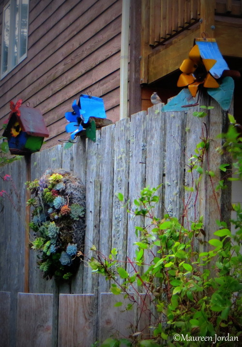 Whimsical birdhouses