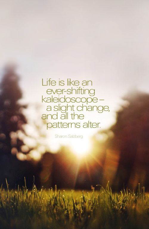 Life is like an ever-shifting kaleidescope - a slight change, and all the patterns alter. ~ Sharon Salzberg