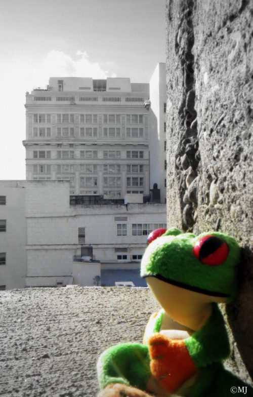 Froggy felt all alone in the world.