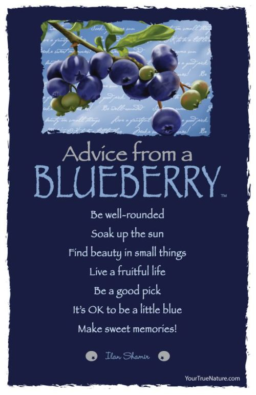 Advice from a blueberry