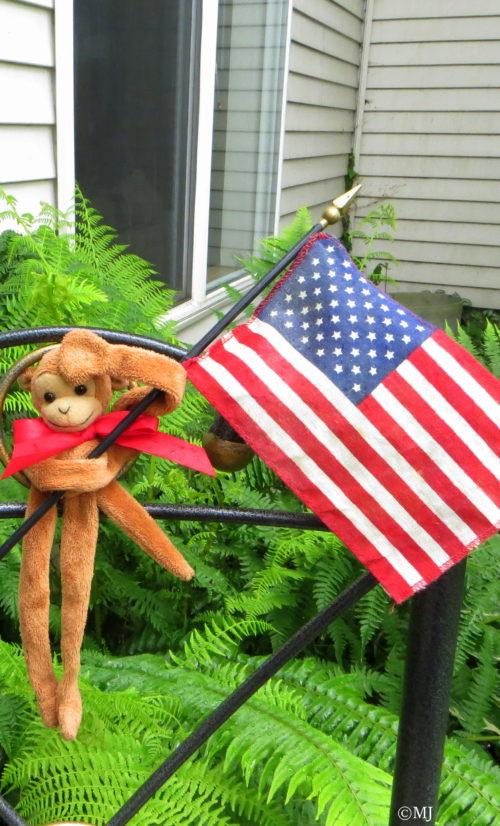 Monkey & Flag