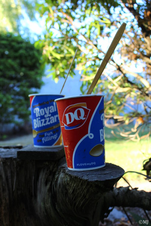 DQ Buy one get one free Blizzard