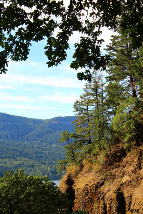 The view from the path to Multnomah Falls looking out towards the Gorge