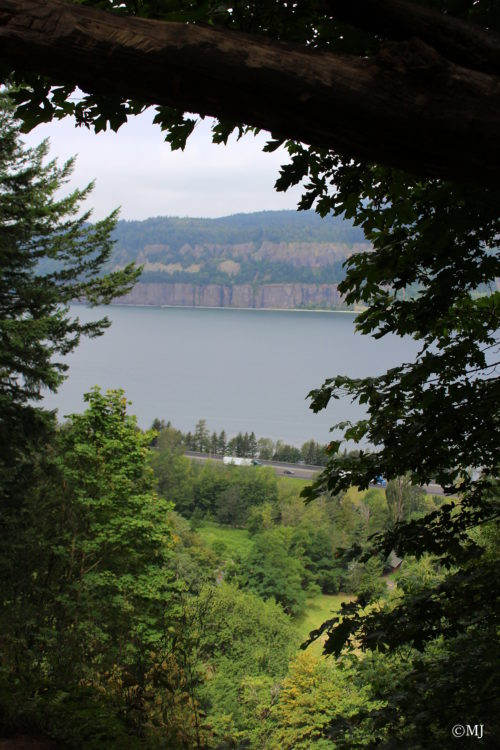 View of the Columbia River Gorge from the trail to Angels Rest