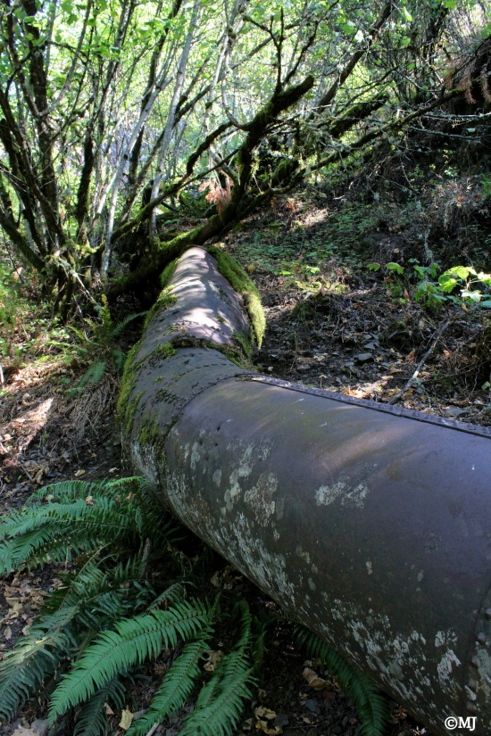 The mysterious rusty pipeline running down the mountain