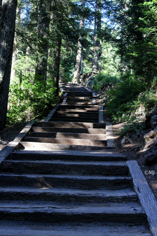 Stairs to Larch Mountain Lookout Point
