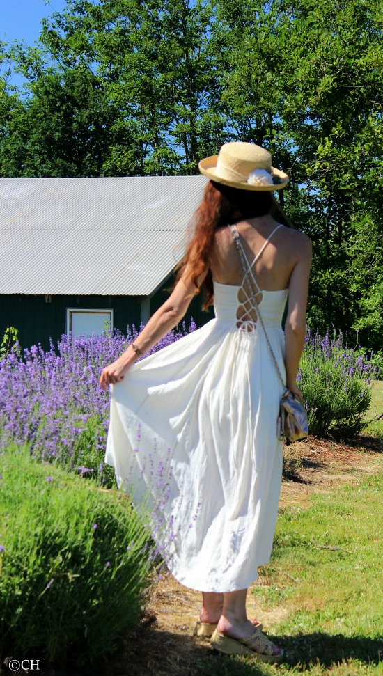Strolling through the lavender fields