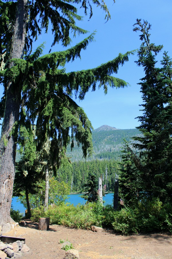 Campground at Olallie Lake