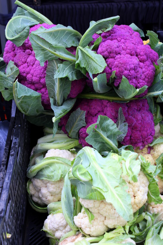 Purple and white cauliflower